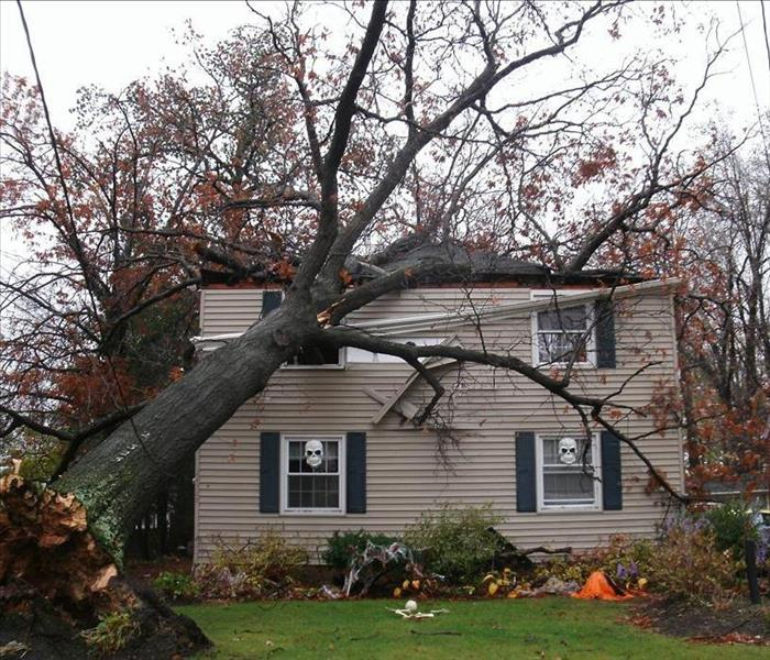 Storm Damage Windstorm Damage: Whose Insurance Covers the Loss?