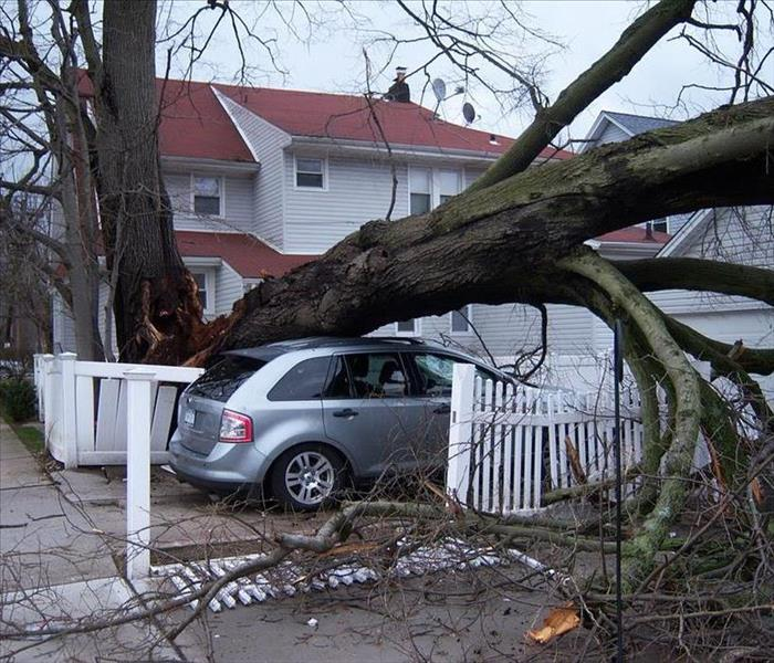 Storm Damage Storm Damage: Validating Claims Through Weather Data