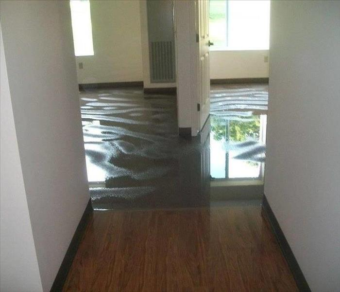 Water Damage Water Back-Up, Overflow or Discharge? Homeowners' Claims