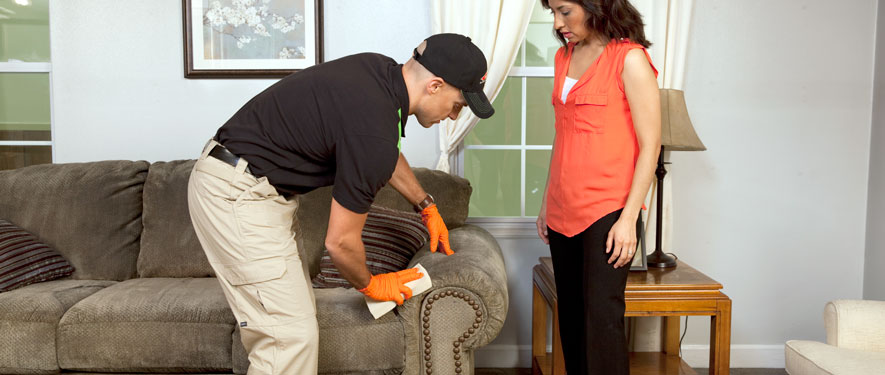Kent, OH carpet upholstery cleaning